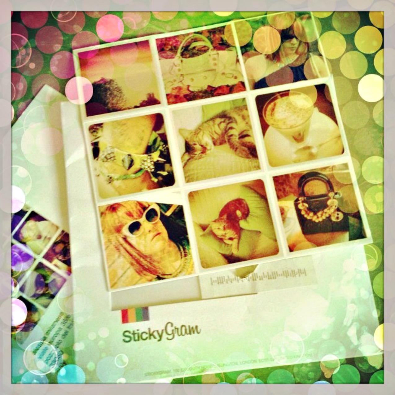 alessia milanese, thechilicool, fashion blog, fashion blogger,STICKYGRAM trasforma le tue immagini di instagram in magneti