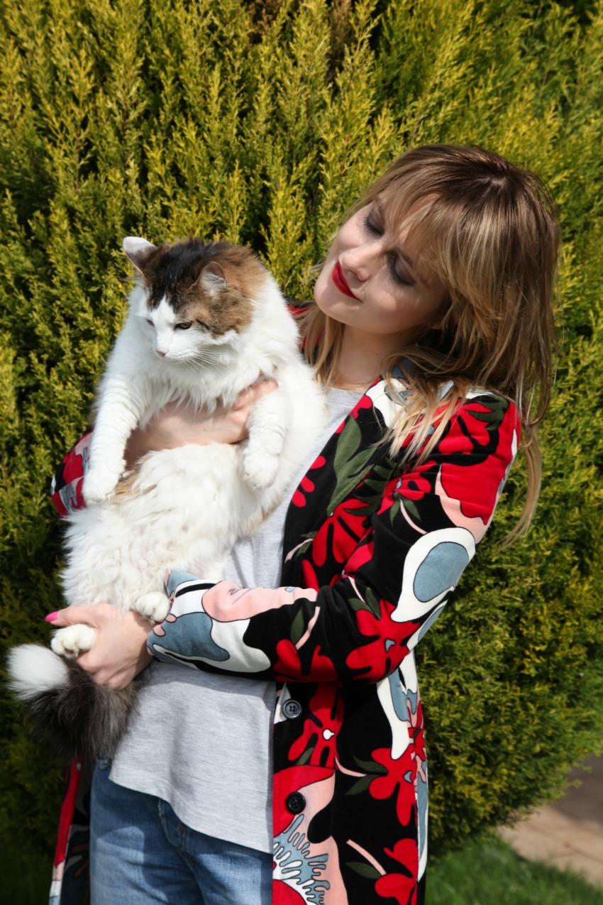 Husse: quando l'amore per gli animali significa scegliere il meglio, alessia milanese, thechilicool, fashion blog, fashion blogger , pet food