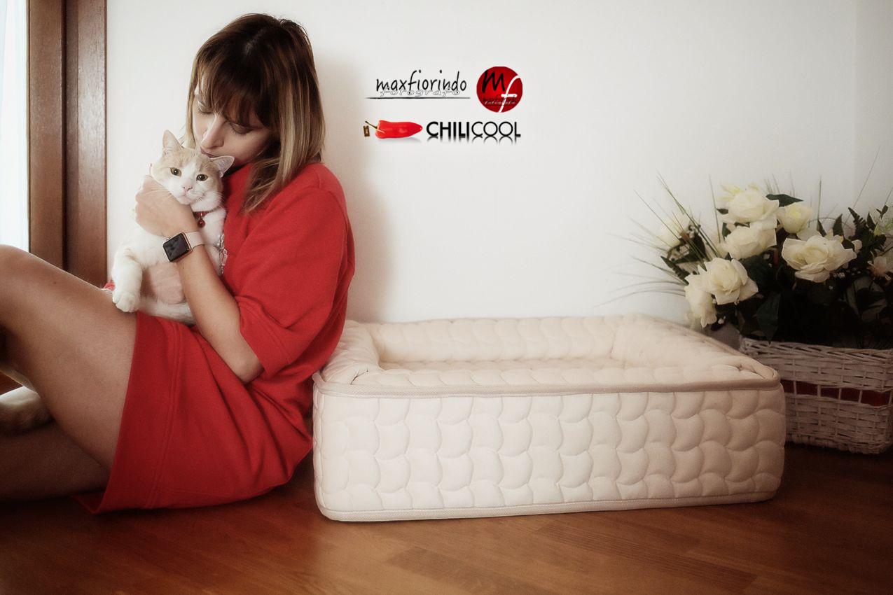 #ChiliHome: relax per i nostri amici a quattro zampe con Vir Manifattura Italiana, alessia milanese, thechilicool, lifestyle blog, lifestyle blogger